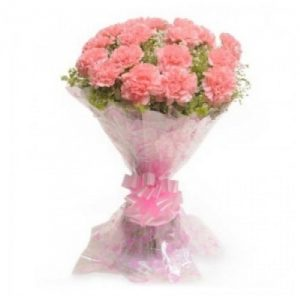 12 pink carnations